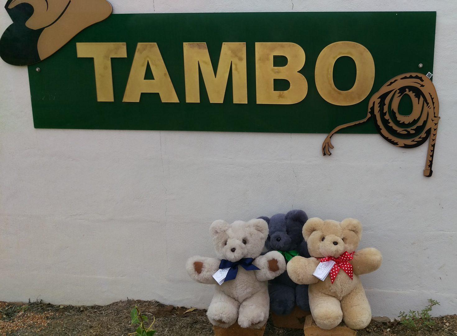 destination Tambo