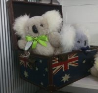 Aussie sheepskin koala teddy bears