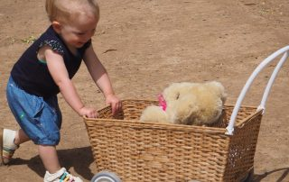 Tambo Teddies are safe to play with