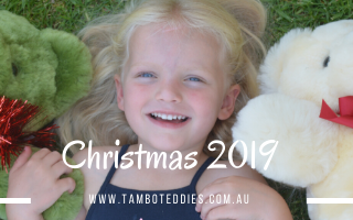Christmas at tambo teddies