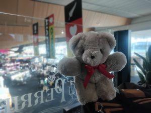 Welcome Whanau to New Zealand