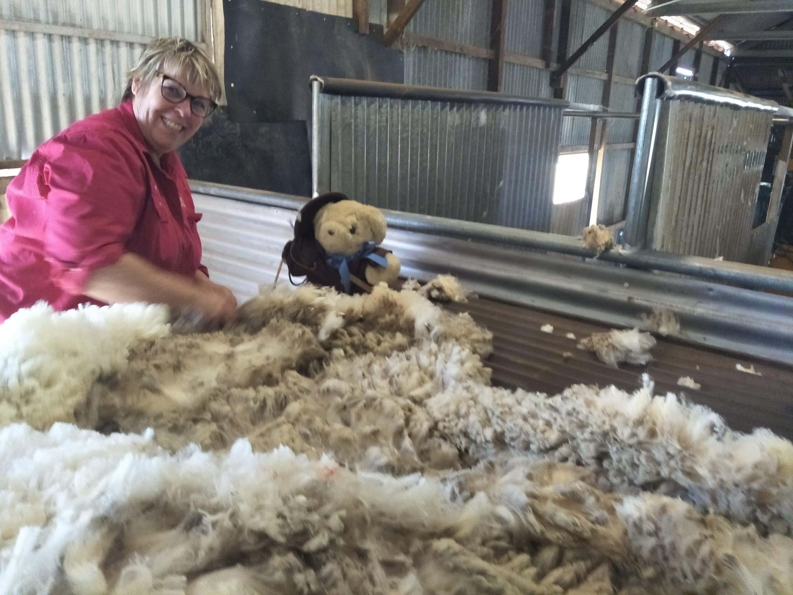 Wool Classing
